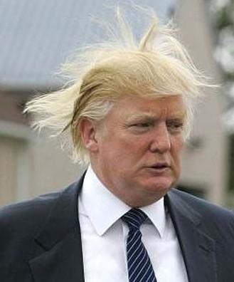 Trump style hair
